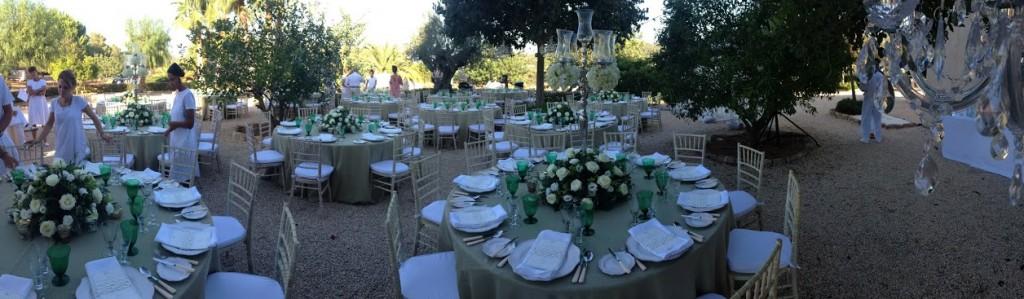 Parties & Weddings in Ibiza